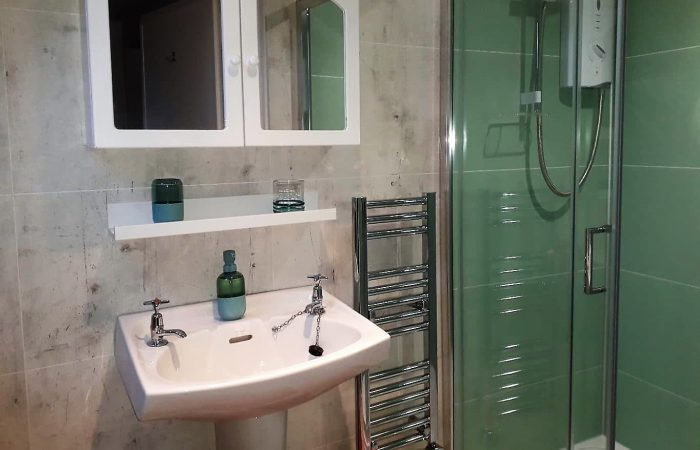 Shower, wash basin, heated towel rail and mirrored cabinet