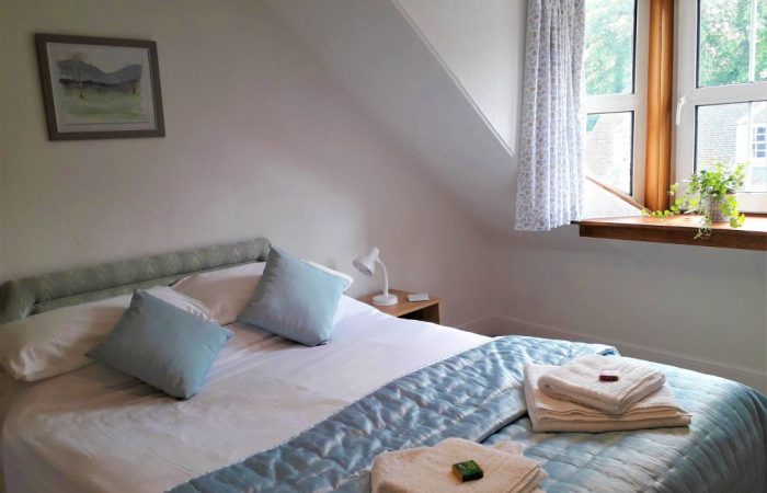 Double bed with white linen, blue bedspread, wall picture and green plant at window