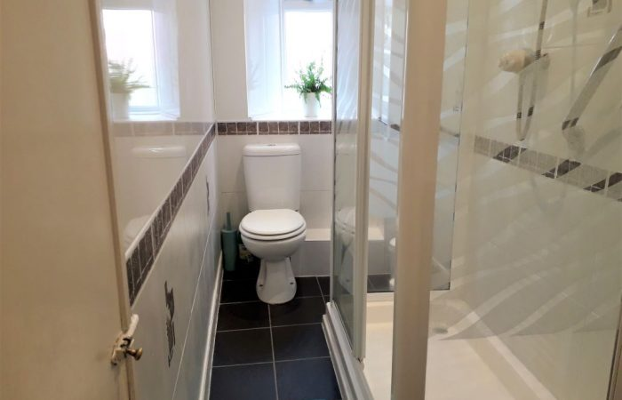 Bright white shower room with wc, black slate floor tiles and green fern